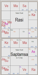 Saptamsa D7 Chart Vedic Astrological Remedies
