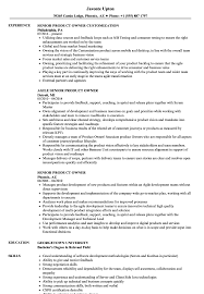 Agile Product Owner Resume Examples Senior Product Owner Resume Samples Velvet Jobs 2