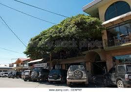 Tree House Costa Rica Stock Photos U0026 Tree House Costa Rica Stock Treehouse Monteverde Costa Rica