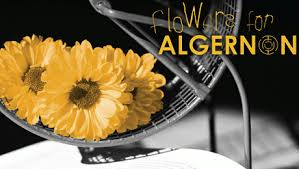 """flower s for algernon s"""" narrative power flyingren an amazing short story that changed my way of looking at disabled people"""