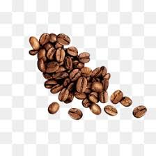 coffee beans png. Plain Png Coffee Beans PNG PSD On Coffee Beans Png R
