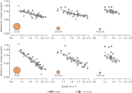 effects of support diameter and compliance on common marmoset figure