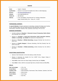 Front End Web Developer Resume Example Professional Sample Portfolio