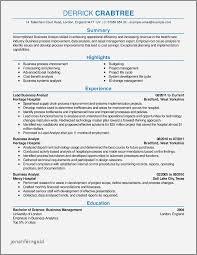 30 Beautiful Great Resume Examples 2016 Jonahfeingold Com