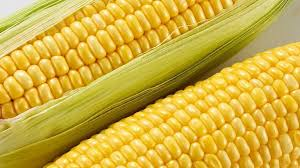 The Truth About Corn Allergy | MomLifeTV