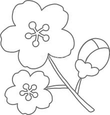 かわいい桜の塗り絵子供向けの線が太めの可愛いイラスト無料フリー