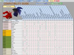 Fish Tank Maintenance Chart See The Comparison Chart To