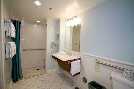 Handicap Bathroom Vanities Shocking Decorating Ideas Using Rectangular Brown Rugs And
