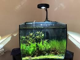 Fluval Flex Light Timer Fluval Flex 15g Build Thread Reef2reef Saltwater And Reef
