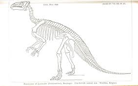 Dinosaur Skeleton Coloring Page Free Coloring Pages On Art