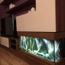 aquarium decorations in fish tank