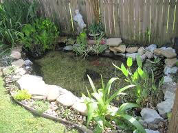 Small Picture Exterior Backyard Swimming Ponds Backyard Pond Ideas Swimming