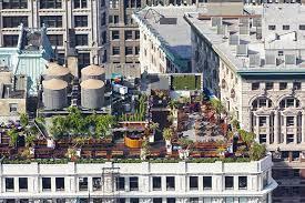 benefits of rooftop gardens