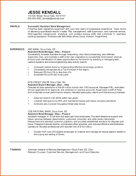 Loan Officer Business Plan Example Examples Commercial Template 90