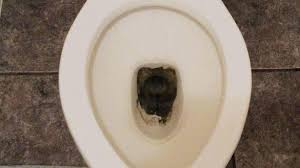 remove rust stains from toilet rust stains in toilets everyday bathroom cleaning tips how to remove
