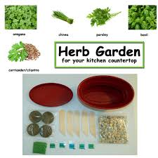 Herb Kitchen Garden Kit Herb Kitchen Garden Kit Everything Needed For Growing Countertop