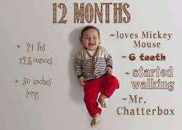 Baby First Year Weight Chart Baby Growth Chart How To Instructions