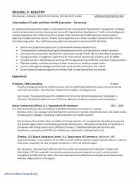 Free General Resume Template New Example Free Resume Templates For