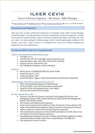 Aspnet Mvc Developer Resume Sample
