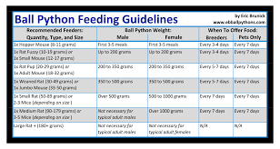 Ball Python Feeding Chart Mice Vs Rats Ball Python Ball