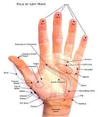 Hand Reflexology Chart Left Hand Reflexology Left Hand Chart Reflexology Left Hand Chart
