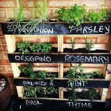 wall mounted herb garden if your outdoor space is limited make a vertical herb garden from wall mounted herb garden