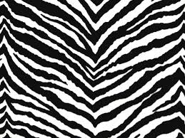 Small Picture 33 best IMAGENES ANIMAL PRINT images on Pinterest Animal prints