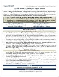 Free Resume Critique Services Free Resume Critique Service Savebtsaco 15