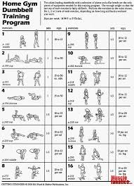 home gym dumbbell program fitness gym dumbbells gym and workout