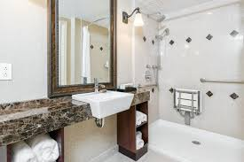 Ada Bathroom Design Ideas
