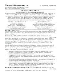 Military Veteran Resume Examples Military Resume Builder