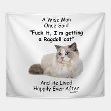 Funny Ragdoll Cat Gift For Men