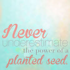Image result for quotes about being planted