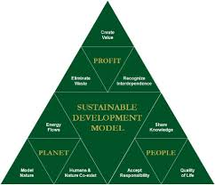 essay on sustainable development need of the hour