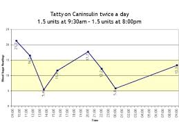 Diabetes In Cats Blood Glucose Curves I Have Done On My