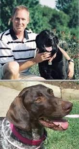 sitting jobs best 25 dog walking services ideas on pinterest guide dog