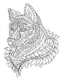 Small Picture Realistic Wolf Coloring Pages New For Adults glumme