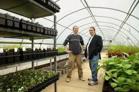 hirt s gardens in medina county finds success with