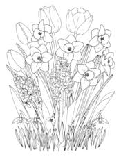 Spring Coloring Pages Printable Coloring Ebook Primarygames