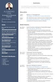 Senior Business Intelligence Analyst/Developer Resume samples