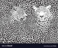 Leopard Pattern Impressive Leopard Pattern Background Royalty Free Vector Image