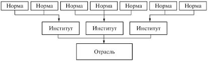 Система российского права К числу основных отраслей относятся конституционное государственное право административное уголовное гражданское семейное трудовое экологическое