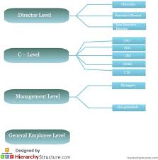 Executive Hierarchy Chart Uk Business Structures Hierarchy Hierarchy Structure