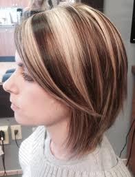 Dark Hair Style short hair bob haircut highlights lowlights bright blonde dark 8370 by wearticles.com