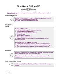 great curriculum vitae templates examples template lab curriculum vitae template 18