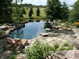 53 best Swimming Pools images on Pinterest Natural swimming pools