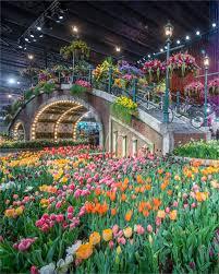 garden shows. Garden Shows