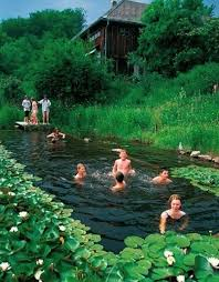 natural looking in ground pools. Beautiful Looking 17 Natural Swimming Pools You Wish Were In Your Backyard And Looking Ground R