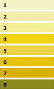Dehydration Chart Urine Color Does Having Clear Urine Really Mean Youre Well Hydrated