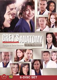 Greys Anatomy - Season 10 (2013) TV Series poster on cokeandpopcorn